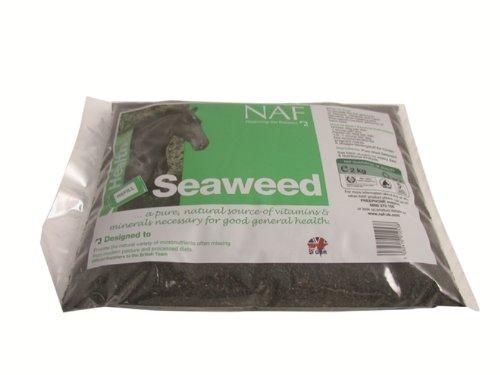 Naf Naf NAF - Seaweed x Size: 2 Kg Refill
