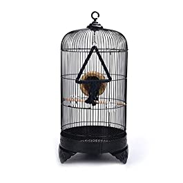 DHTOMC Birdcage European Style Birdcage Round Metal Bird Villa Outdoor Indoor Ornamental Bird Cage Aviary Xping