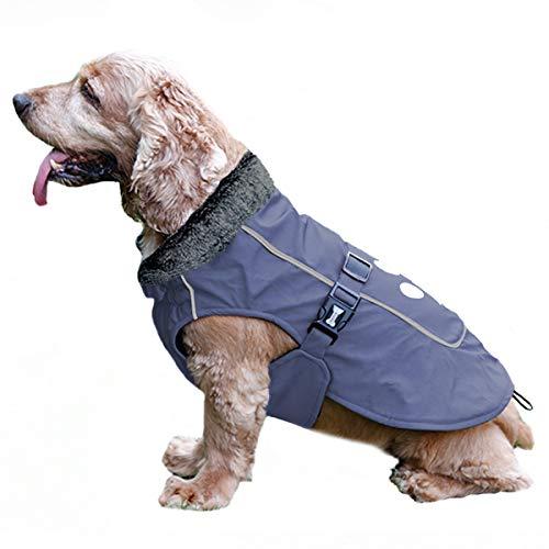 TFENG Reflektierend Hundejacke für Hunde, Wasserdicht Hundemantel mit Warm Pelzkragen, Weste Welpen Regenmantel, (Blau, Größe M)