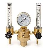 QWERTOUR Argon CO2 Manomètre Régulateur Mig Tig Débitmètre Vanne de régulation de soudage au gaz Double Tube Bubble Contre Aquarium Débitmètres