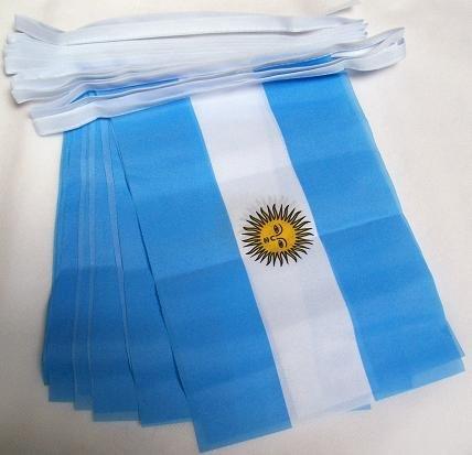 AZ FLAG Guirlande 6 mètres 20 Drapeaux Argentine 21x15 cm - Drapeau Argentin 15 x 21 cm