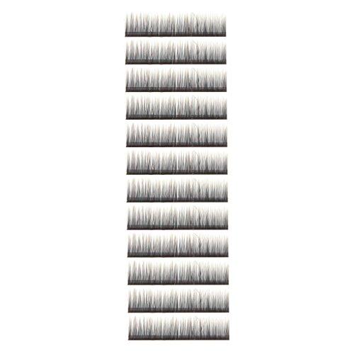 0.10 C-boucle Deux Tons Plateau de Faux Cils Extensions de Cils - 12mm , Pointe Grise
