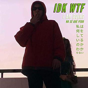 Idk Wtf I Am Doing
