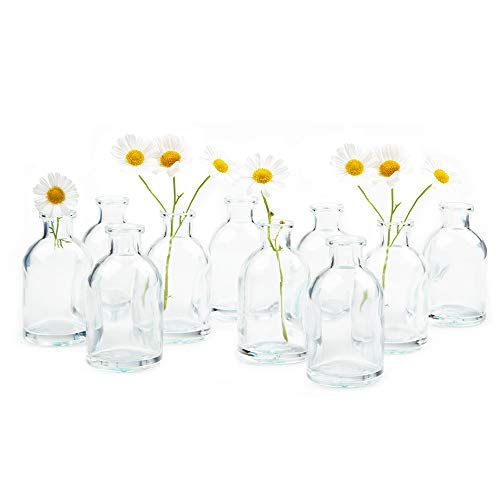 Chive - Loft, Set of 10 Clear Tall Bottle 1.75' Width, 3.25' Tall Small Glass Flower Vases, Decorative Rustic Floral Vases for Home Decor Centerpieces, Events, Single Flower Bud Vase, Vintage Look