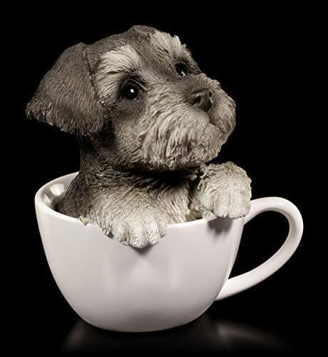 Hunde Figur - Schnauzer Welpe in Tasse | Dekofigur, Handbemalt
