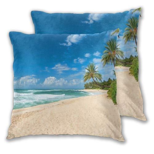 DECISAIYA Fundas de Cojines,Océano Virgen Playa de Arena Palmeras Árboles del Pacífico Calma Azul Parques Naturales Al Aire Libre EE. UU. Diseño,Decorativa Funda de Almohada para Sofá 60x60cm