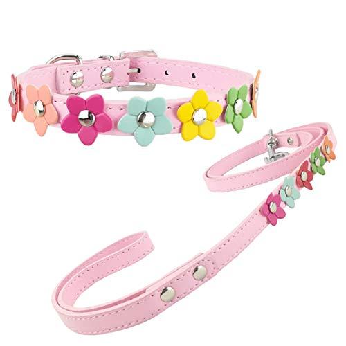 Newtensina Stilvolle Hundehalsband und Leine Set Hundehalsband Mädchen Blume Welpen Halsbänder Leinen für kleine Hunde mit Blume
