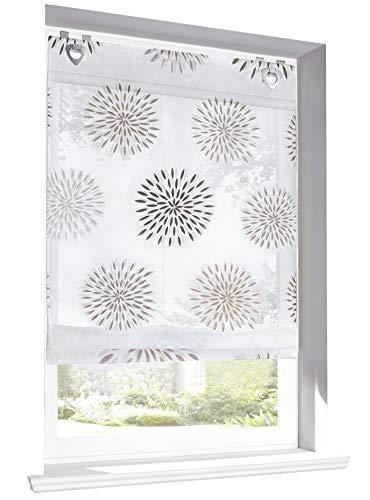 BAILEY JO Raffrollo mit Kreis-Motiven Druck Design Rollos Voile Transparent Vorhang (BxH 80x140cm, Braun mit U-Haken)