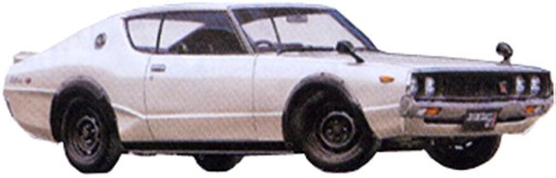 Skyline KPGC110 GT-R 1 24