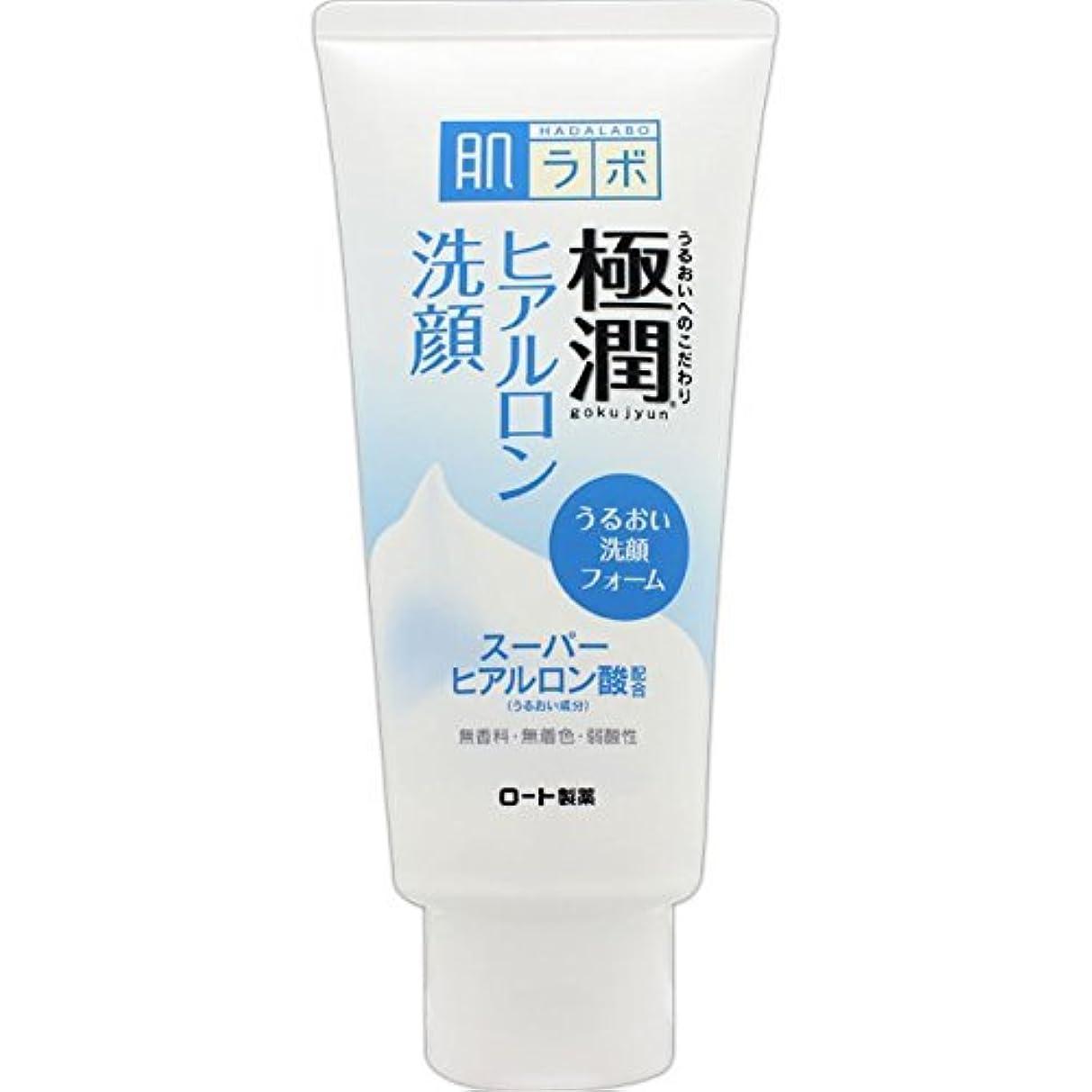 南アメリカホステスメイエラ肌ラボ 極潤 ヒアルロン洗顔フォーム 100g