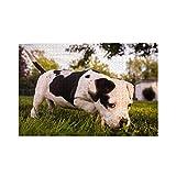 bulldog americano cachorro perro curioso rompecabezas para adultos jóvenes 1000 piezas rompecabezas de madera juegos de aprendizaje rompecabezas para decoración del hogar rompecabezas