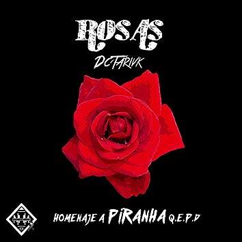 Rosas - Single