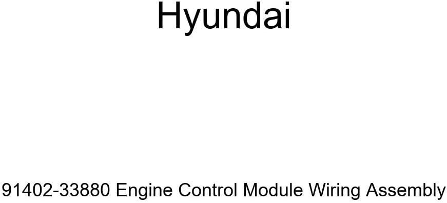 Selling rankings Genuine Hyundai 91402-33880 Engine Wiring Ranking TOP1 Control Assembl Module