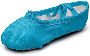 MSMAX Women's Ballet Slipper Split Sole Yoga Dance Flats