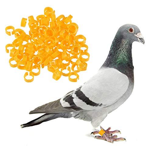 UEETEK Bagues Anneaux de Pied pour Oiseaux Pigeon Poulet Canard Volaille (Jaune) - 100 Pièces