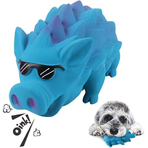 G.C Hund Kauspielzeug Quietschspielzeug unzerstörbares Hunde Schwein Spielzeug Natürliches Gummi Zahnbürste für Mittelgroße Große Hündchen (Blau, Sonnenbrille)