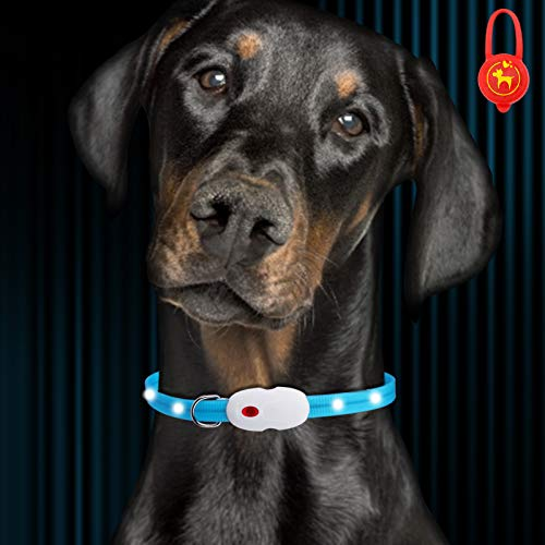 Oladwolf Collar Luminoso Perro, USB Recargable Collar Perro luz Seguro 3 Modos, Collar LED Impermeable Ajustable para Perro y...