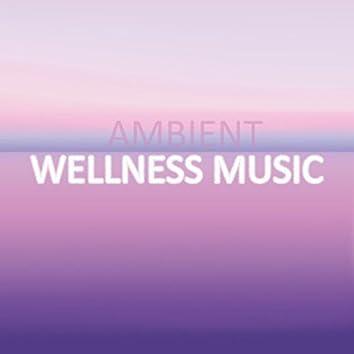 Ambient Wellness Music