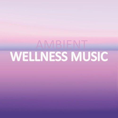 Easy Sleep Music, Deep Sleep Meditation & Music For Absolute Sleep