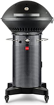 Fuego F24C Professional Carbon Steel Gray Gas Grill