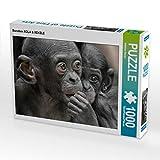 CALVENDO Puzzle Bonobos XOLA & XEKELE 1000 Teile Lege-Größe 64 x 48 cm Foto-Puzzle Bild von Besant Matthias