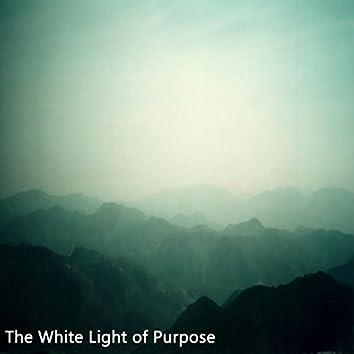 The White Light of Purpose