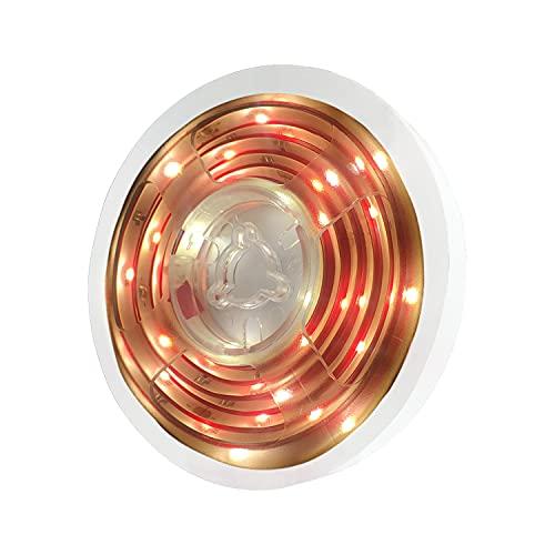 BRTLX 人感センサーライト LEDテープライト 150cm 12v 防水 優しい光 自動点灯消灯 光感センサー フットライト ベッドの下 廊下 ドア 玄関ライト キッチン間接照明 切断可能