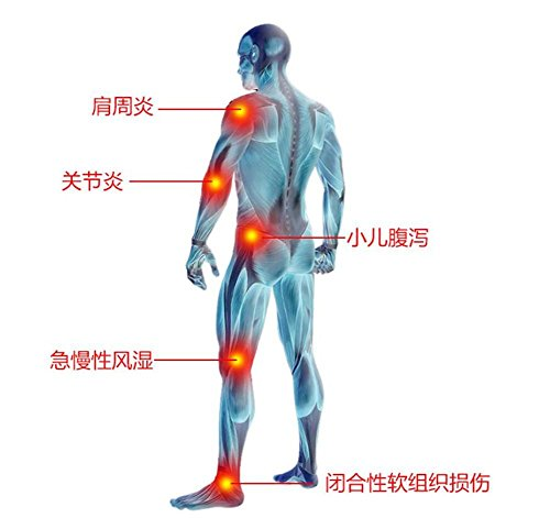 biofamily Infrarotstrahler  Physiotherapie-Multifunktional  die Pflege der Haut Betrieb Bild 4*