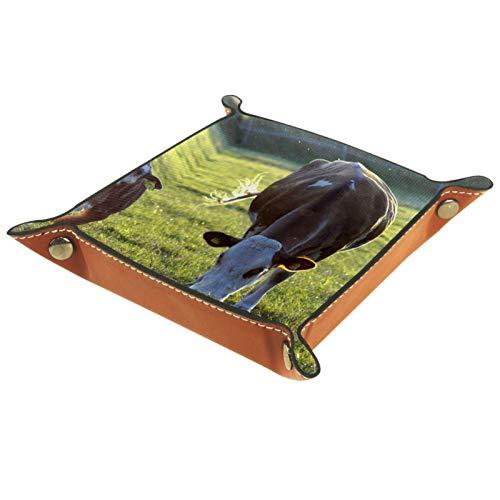 Caja de almacenamiento pequeña, bandeja de valet para hombre,Aniaml Vaca Hierba Pasto Rumiante,Organizador de cuero para llaves de caja de monedas
