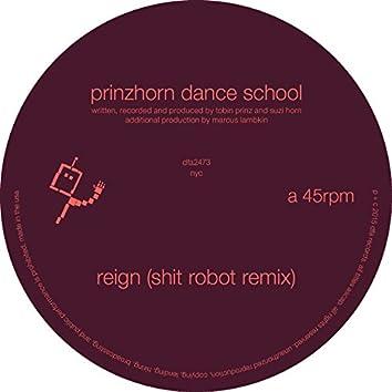 Reign (Shit Robot Remix)