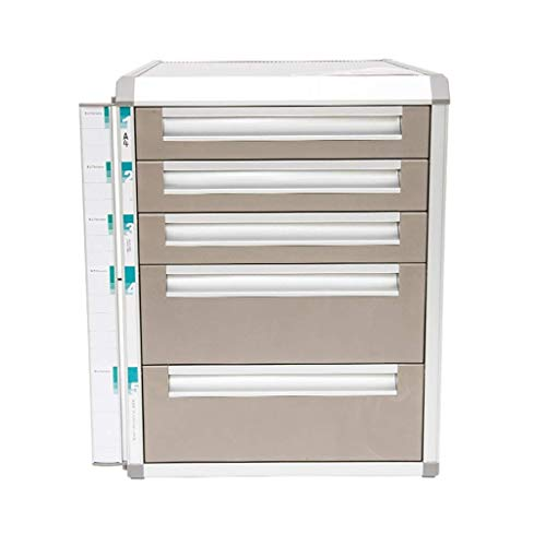 HYY-YY Organizador de cajones de escritorio con cerradura de aleación de aluminio para almacenamiento de datos y oficina con cerradura (diseño: 5 capas)