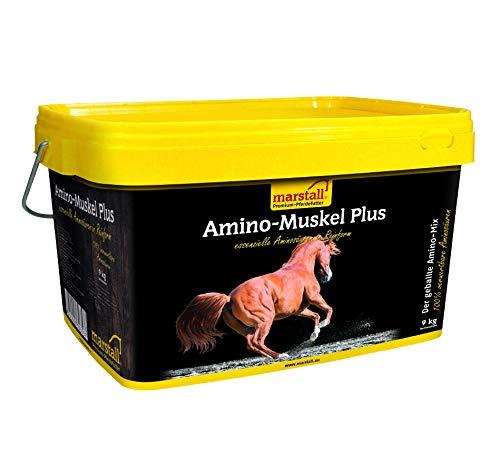 marstall Premium-Pferdefutter Amino-Muskel Plus, 1er Pack (1 x 9 kilograms)