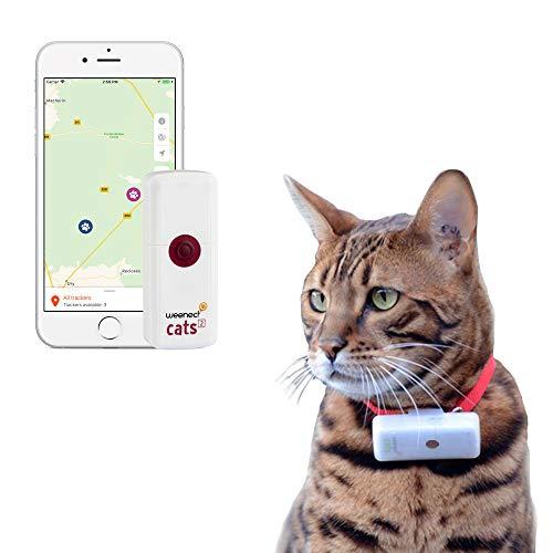 Weenect Cats 2 - Weltkleinster GPS Tracker für Katzen
