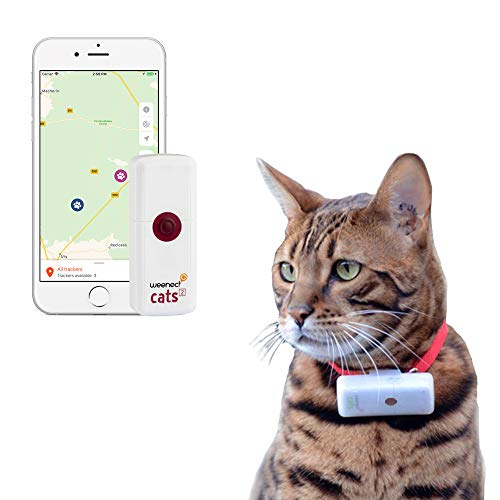Weenect Cats 2 - Collier GPS pour chat