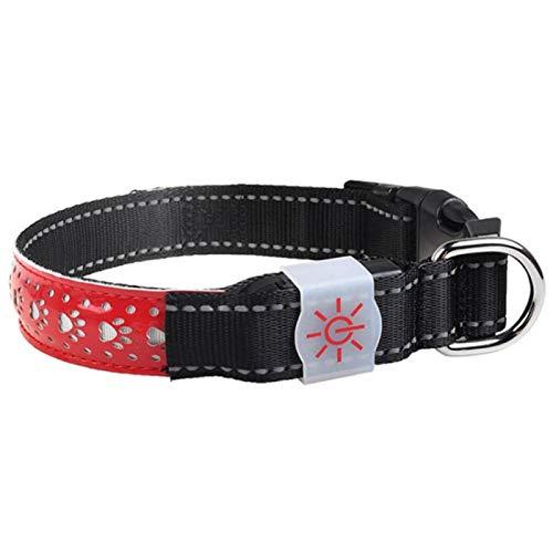 SALUTUYA Collar Recargable para Mascotas, se Puede reutilizar, el Anillo para el Cuello del Perro Puede Hacer Que la Mascota Sea más Visible,(Red, S Code)