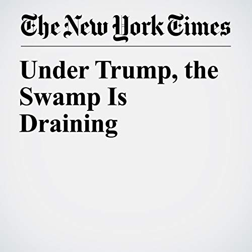 Under Trump, the Swamp Is Draining audiobook cover art