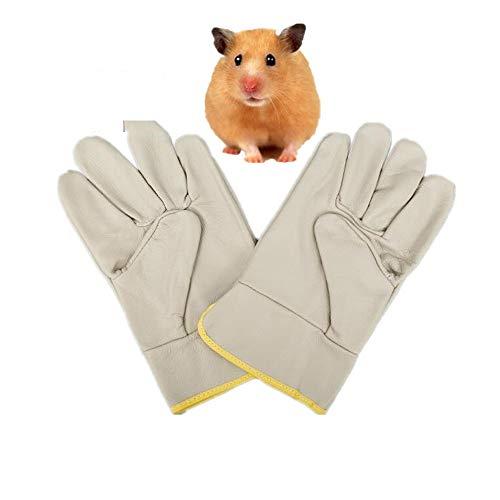 WBFN - Guantes de Seguridad antimordeduras para Mascotas, para Mascotas pequeñas, Ardillas, erizos, hámsteres, Uso en Laboratorio, Guantes de Seguridad de Cuero Vacuno