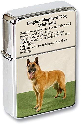 Belgischer Schäferhund (Malinois) Klappfeuerzeug in einer Geschenkdose