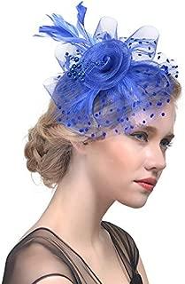 Shentukeji Fascinators Flower Feather Mesh Hairband Women Girls Tea Party Cocktail Race Club Headdress Hair Clip