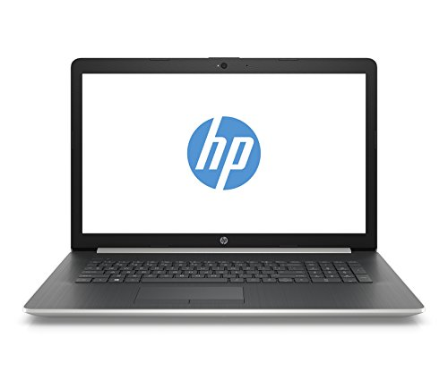 HP 17-by2230ng (17,3 Zoll / Full HD) Laptop (Intel Core i5-10210U, 8GB DDR4 RAM, 256GB SSD, AMD Radeon 530 2GB GDDR5, Windows 10 Home) silber