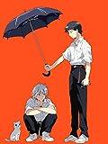 Eva Regenschirme Bewertung und Vergleich
