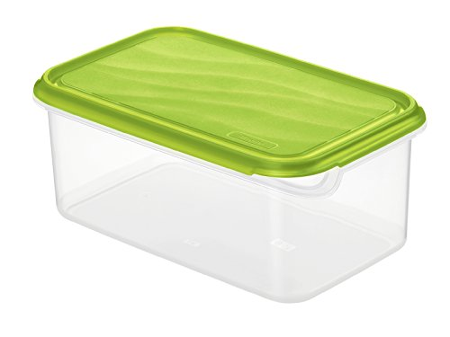 Rotho Rondo Frischhaltedose, Kunststoff (BPA-frei), grün / transparent, 2 Liter (24 x 16 x 9,7 cm)