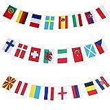 Rorchio Euroflagge 2021 2020 Fußball 24 Teams, Euro-Flagge 2021 2020 für Garten, Wohnzimmer, Bar, Restaurant & Geschäft (14 x 21 cm – 9 m)