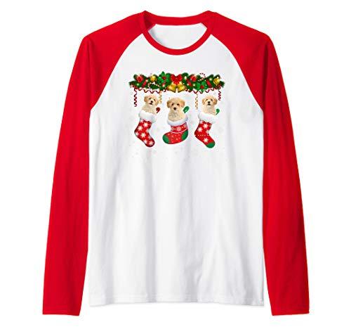 Poochon In Christmas Socks Cute Poochon Lover Xmas Gifts Raglan...