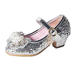 A-Silver Mary Jane Low Heels Shoes