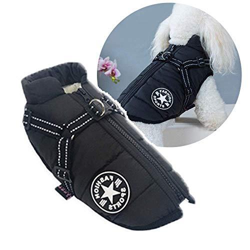 N-brand Winter Hundemantel Geschirr, warme Jacke für kleine Hunde im Freien, kaltes...