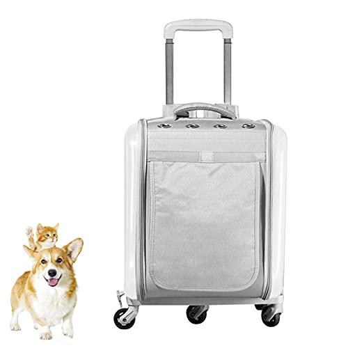 DUTUI Maleta De Verano Transpirable para Mascotas, Bolsa para Gatos, Bolsa para Excursiones para Gatos, Caja para Mascotas con Jaula Portátil, Adecuada para Que Las Mascotas Salgan,Plata