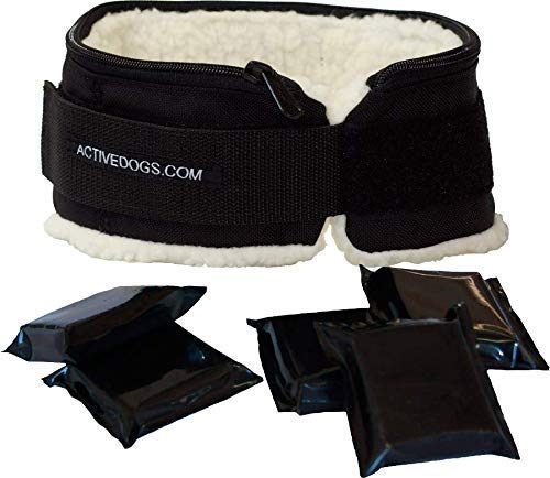 Dog Muscle Building Weighted Collar - Weight Pulling Trainer - Dog Endurance Builder