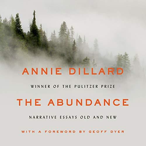 Page de couverture de The Abundance