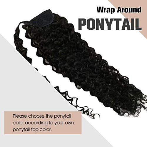 Brazilian ponytail _image2